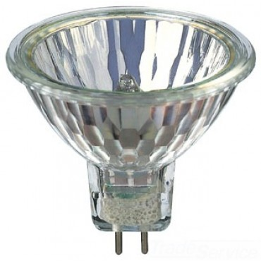 Halogen - G Lamps